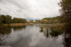 Karower Teiche